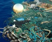 Grim death toll as world's oceans reach tipping point from our everyday waste