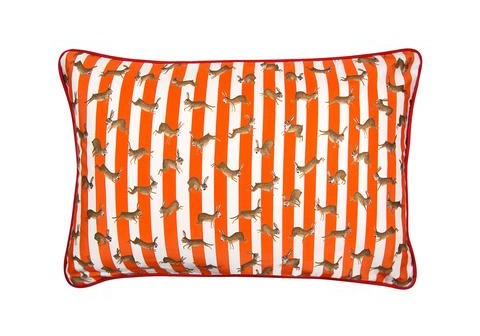 Made in the UK – Racing Rabbits stripe cushion