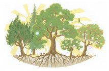 TreeConference.illustration