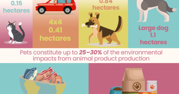 did_711_environment_infographic_a5